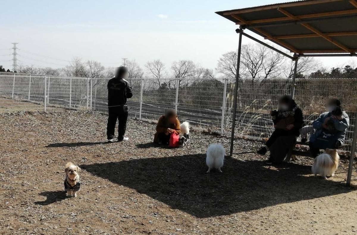 RVパーク ドッグランWANport 小型犬エリア キャンピングトレーラー