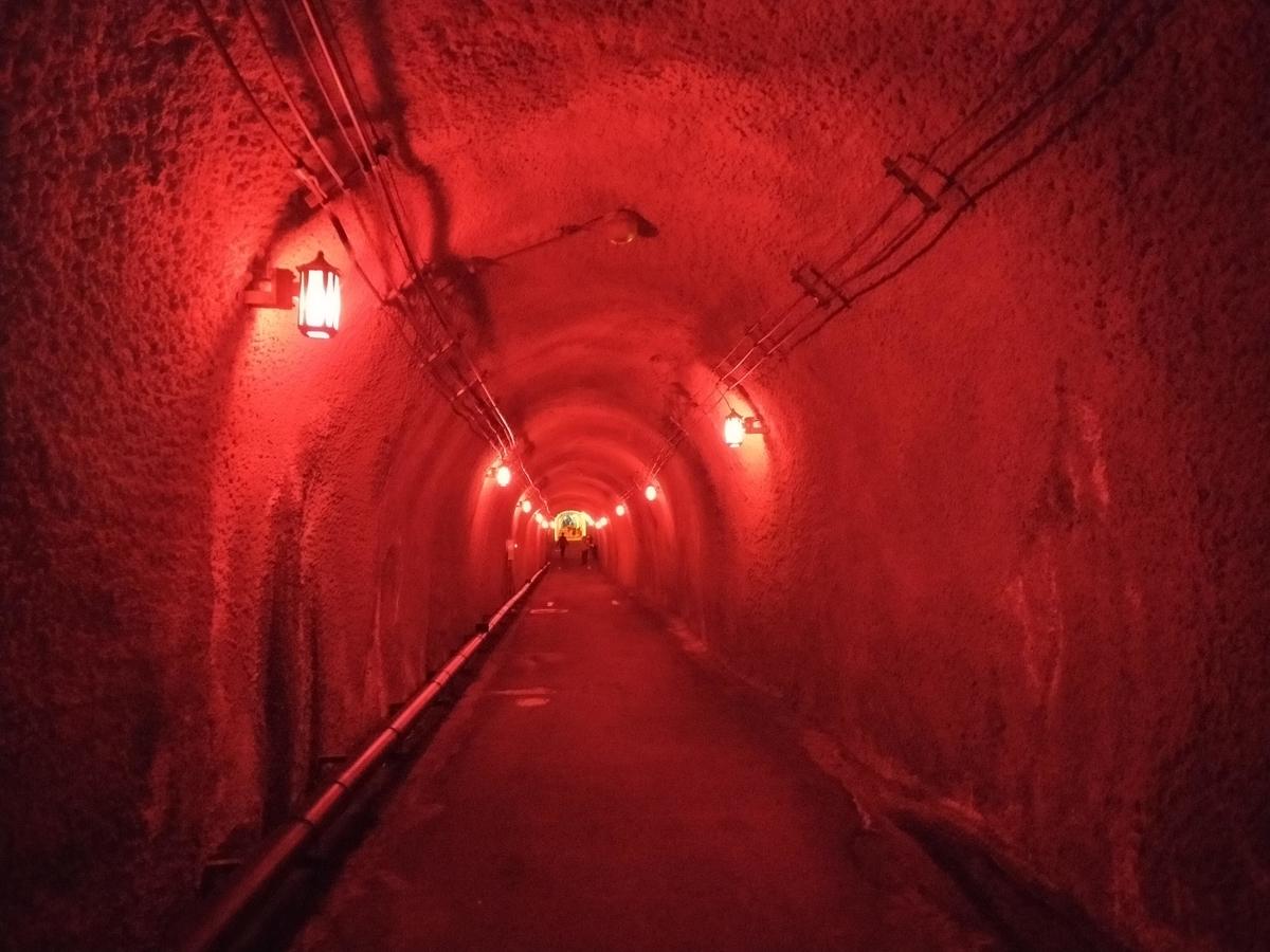 清津峡 ペット ゴールデンウィーク トンネル