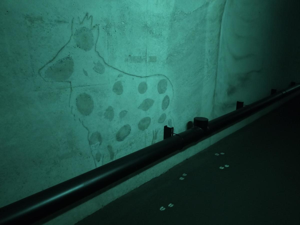 清津峡 ペット トンネル 壁の絵
