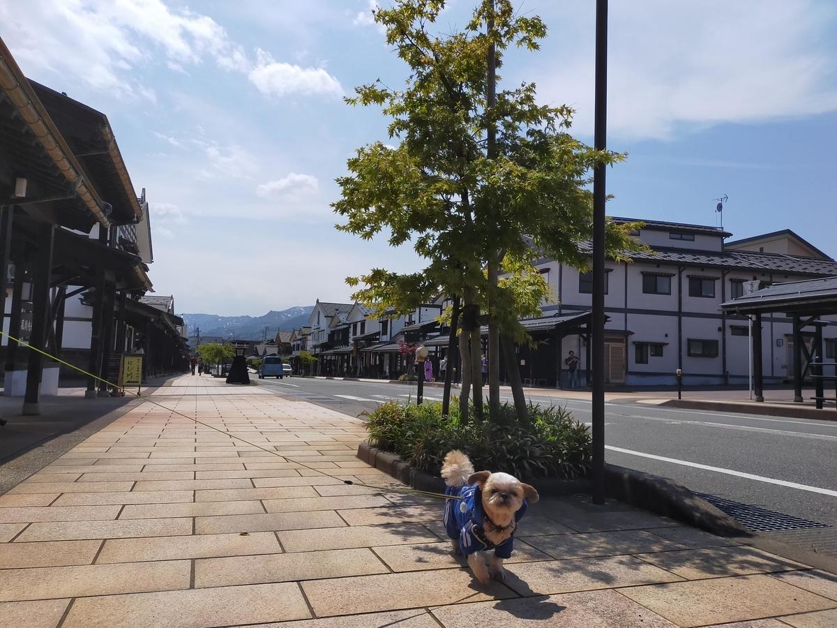 三国街道 塩沢宿 キャンピングトレーラー 旅行 ペット