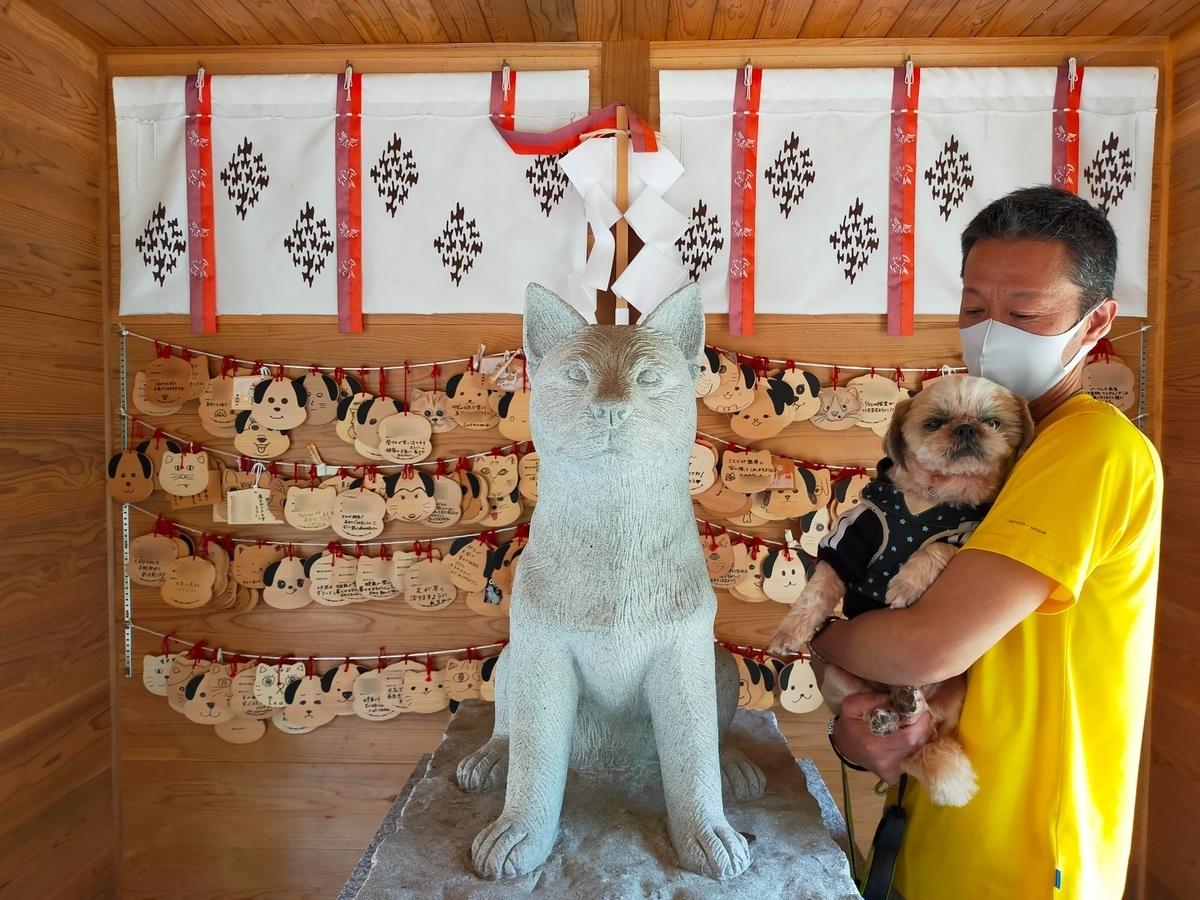 新潟県 長岡市 蒼柴神社 忠犬しろ神社 悠久山公園