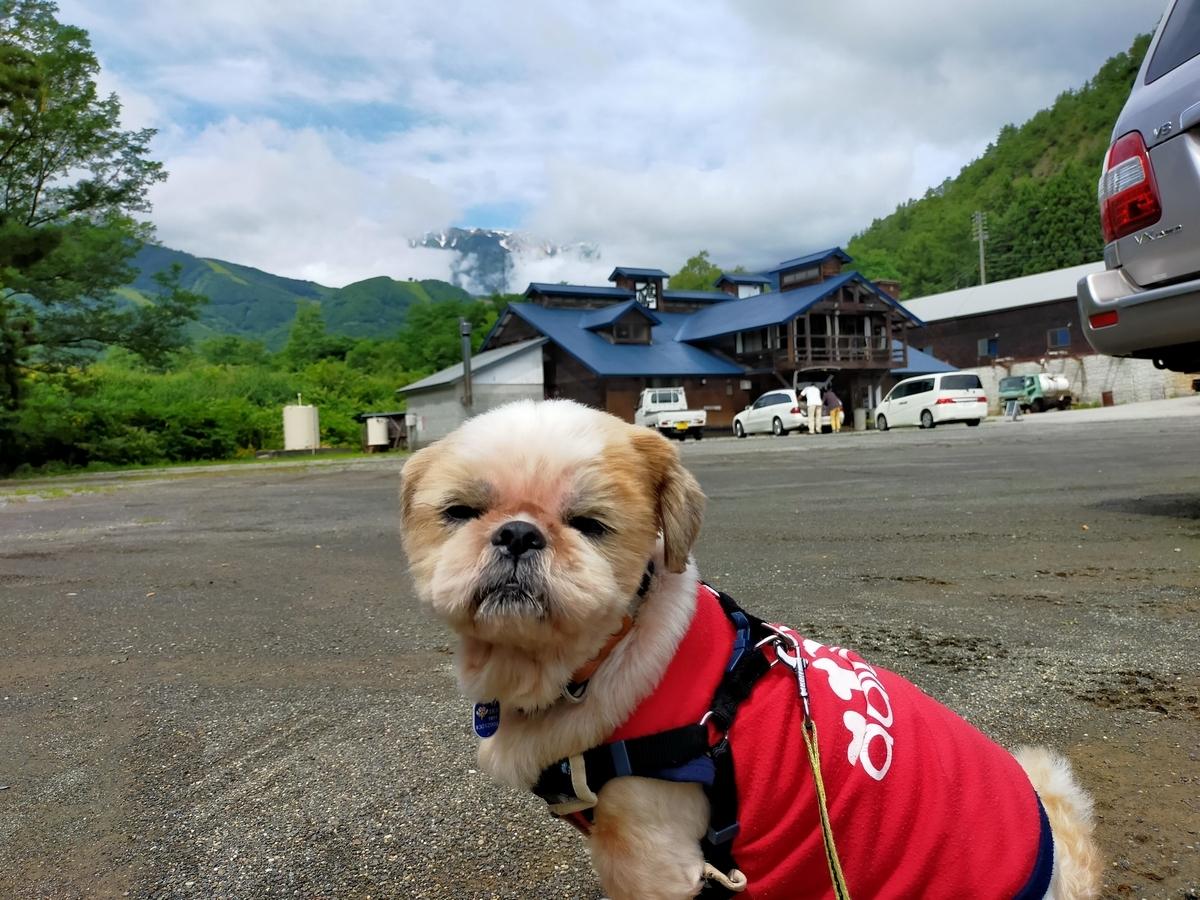 白馬塩の道温泉 倉下の湯 くるま旅クラブ くるま旅パーク キャンピングトレーラー 車中泊 旅犬