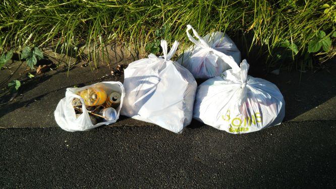 レジ袋3枚分の燃やすごみと、レジ袋1枚分の分別する必要のあるゴミの様子