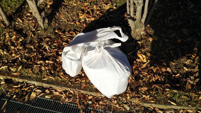 レジ袋1枚分の燃やすゴミと、レジ袋1袋分の要分別のゴミの様子。
