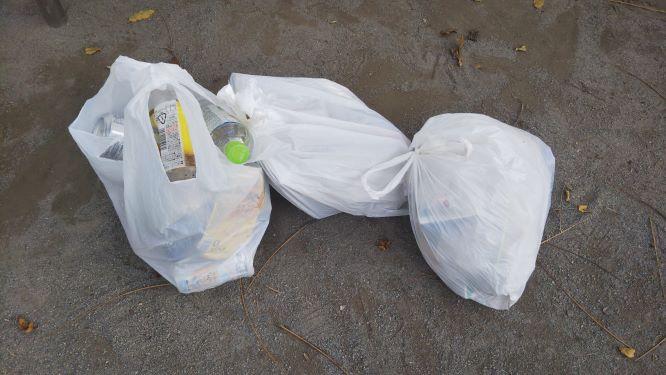 レジ袋2枚分の燃やすゴミと、レジ袋1枚分の要分別のゴミの様子