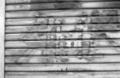 [PRESTO400][フイルム][白黒フイルム]