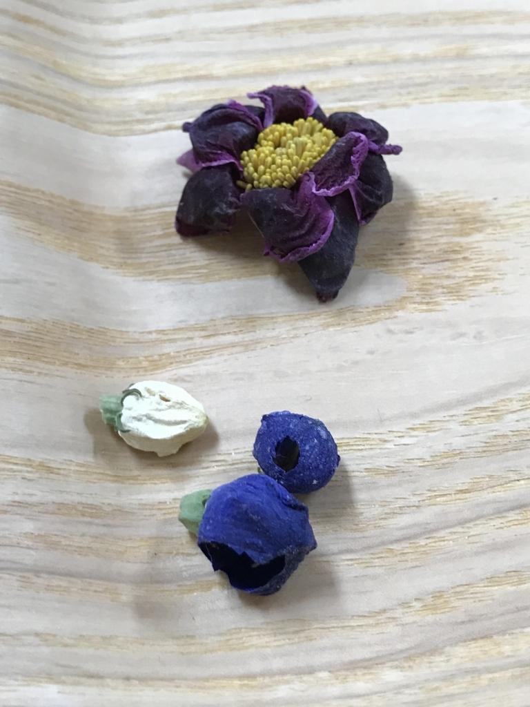 f:id:les-papillons-roses:20180414091450j:plain