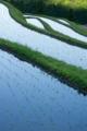 京都新聞写真コンテスト 水の坂道』