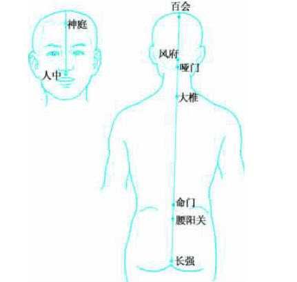 督脈の画像