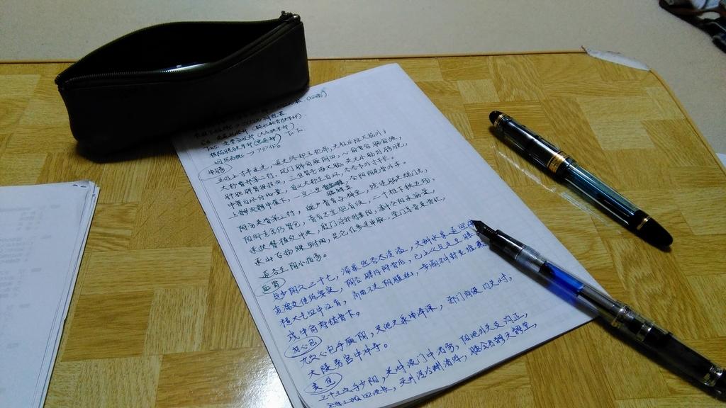 私が愛用している万年筆:パイロット843