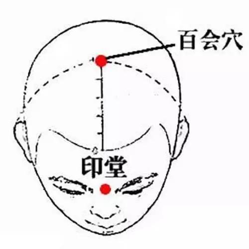 百会の簡易図