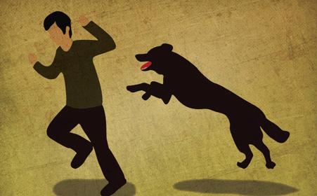 中国古代から狂犬病の記録、治療方法がある