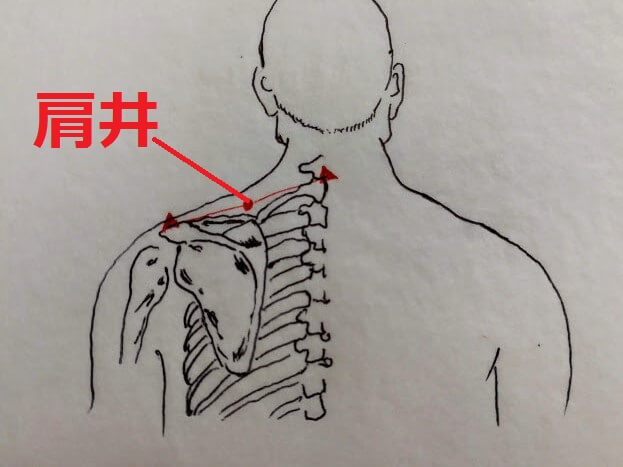 肩井の場所
