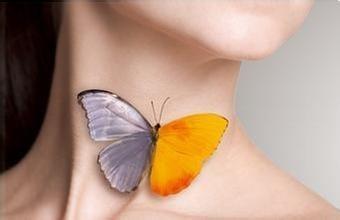 甲状腺疾患は、心臓が根本的な原因である