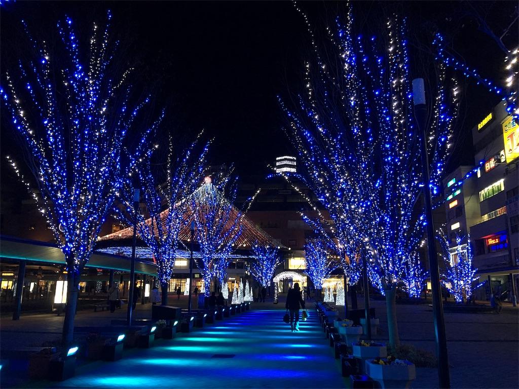 f:id:librarian_kinu:20170108090304j:image