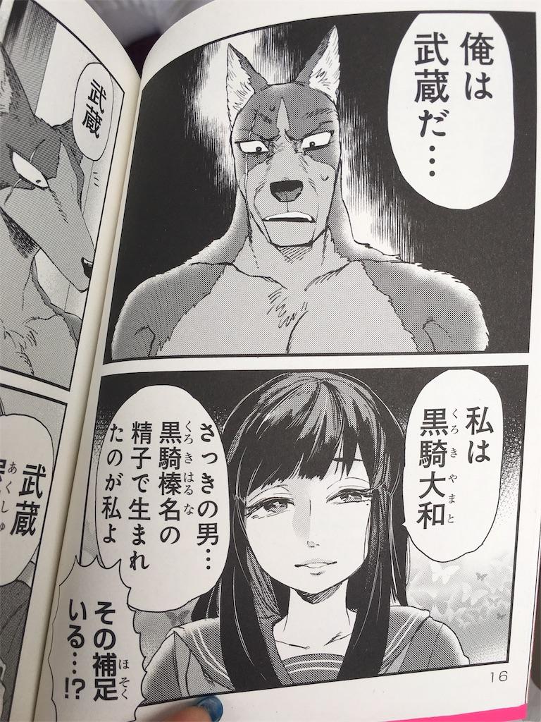 f:id:librarian_kinu:20170731131847j:image