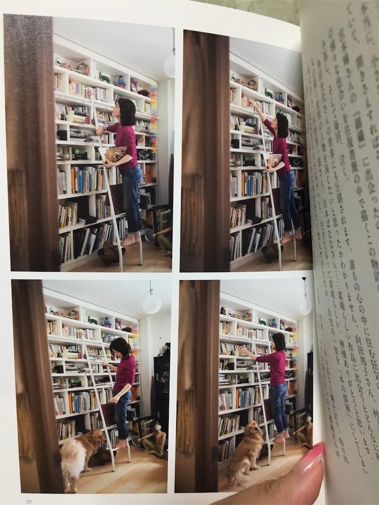 f:id:librarian_kinu:20180925193147j:image