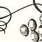 f:id:libros:20150623151318p:image