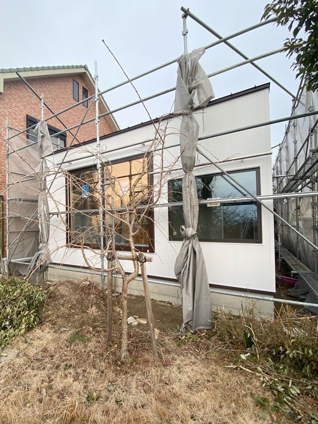 f:id:lien-house:20200117095113j:plain