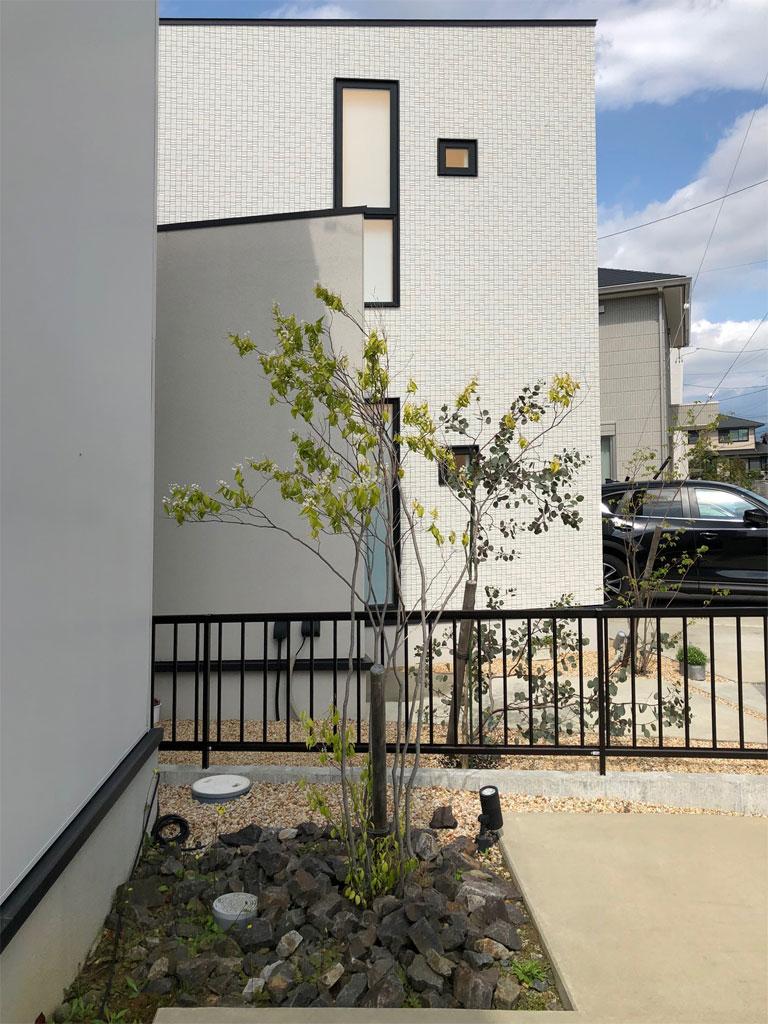 f:id:lien-house:20210417170758j:plain