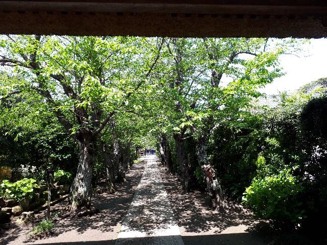 f:id:lienmachi:20180420135821j:image