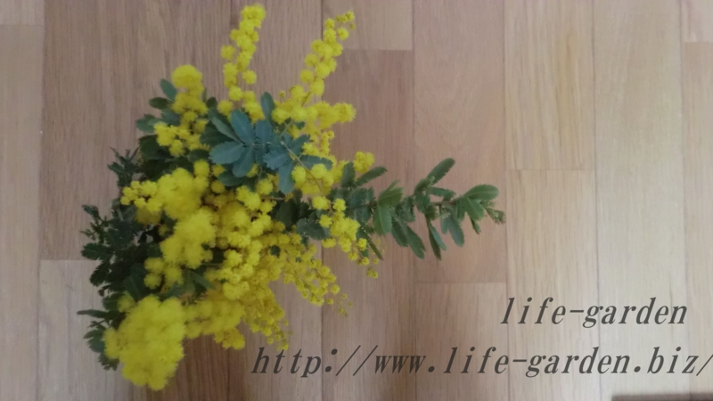 f:id:lif-g:20130120222359j:image:w360