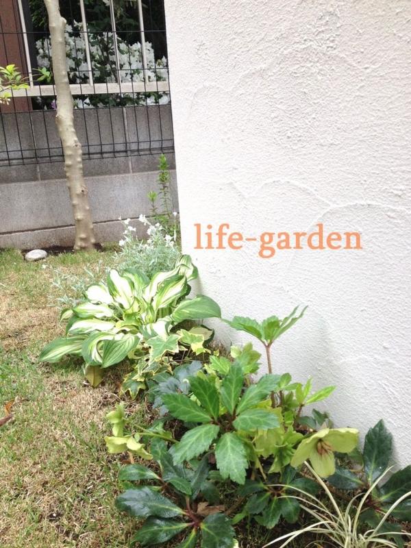 f:id:lif-g:20140506170926j:image:w360