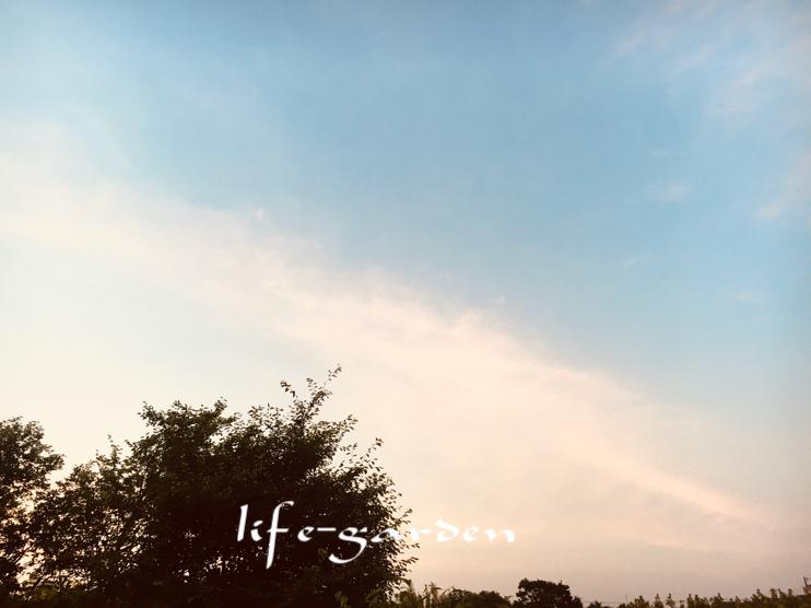 f:id:lif-g:20200610133054j:plain