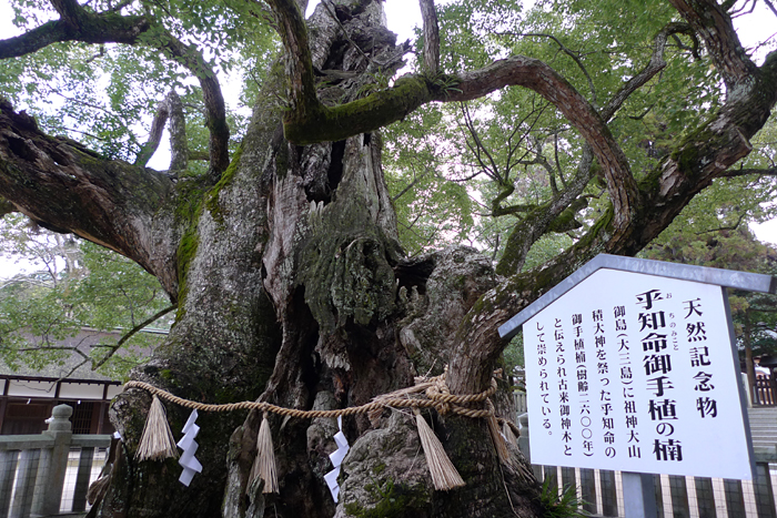 f:id:life-art-tsubasa:20161004133935j:plain