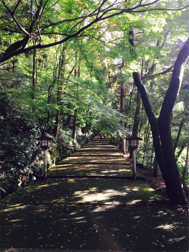 f:id:life-art-tsubasa:20161104235215j:image