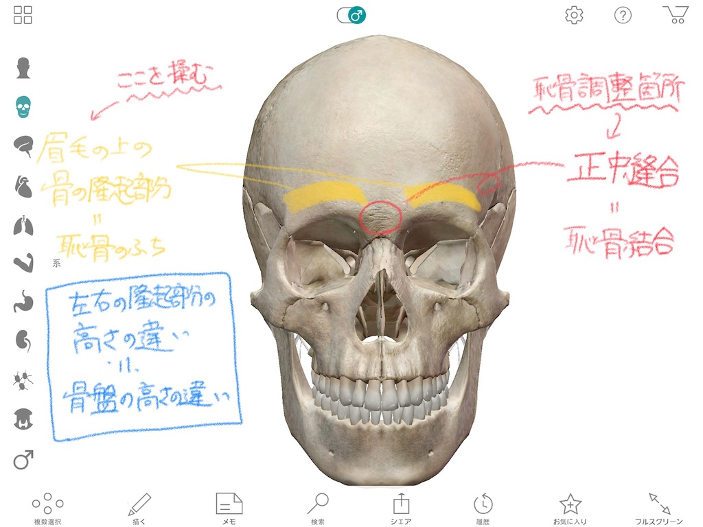 f:id:life-art-tsubasa:20180703174830j:plain