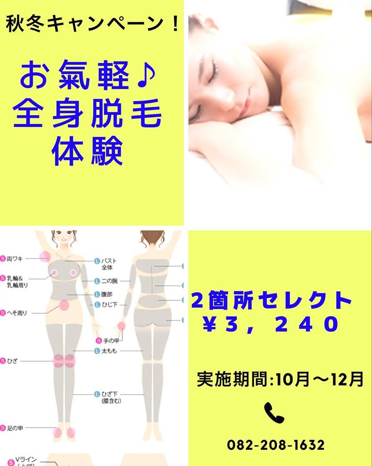 f:id:life-art-tsubasa:20181015215243j:plain