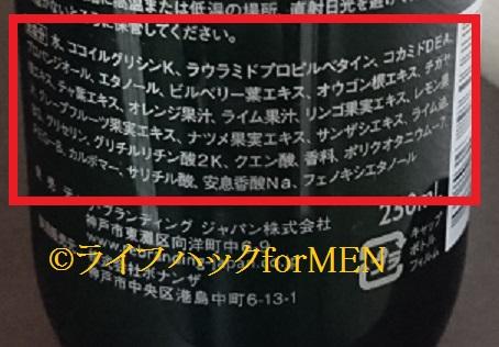 f:id:lifecraft:20181208182213j:plain