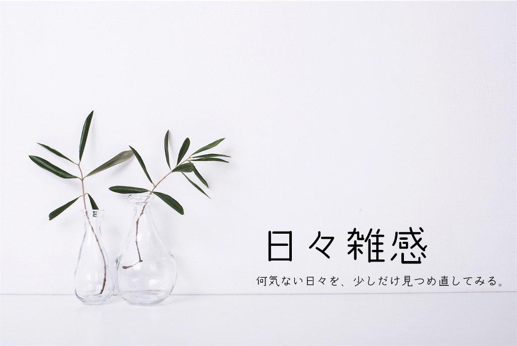 f:id:lifedesign-nakamura:20181115061912j:plain