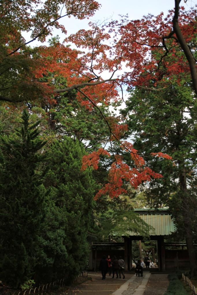 f:id:lifeinkamakura:20161203223510j:plain