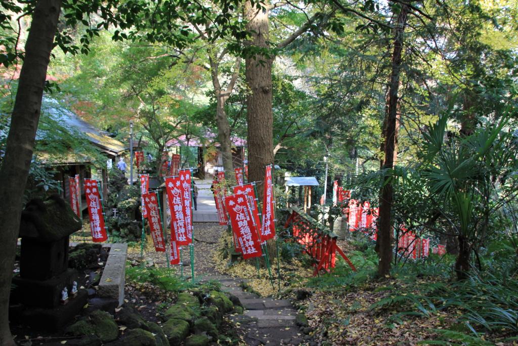 f:id:lifeinkamakura:20161207220404j:plain