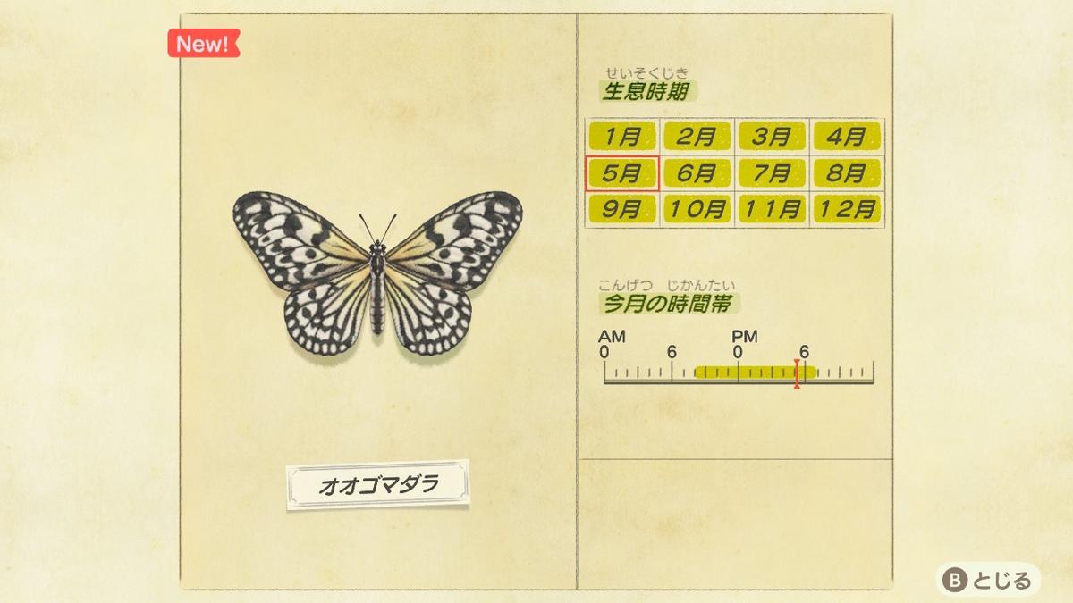 f:id:lifelog888:20200513232439j:plain