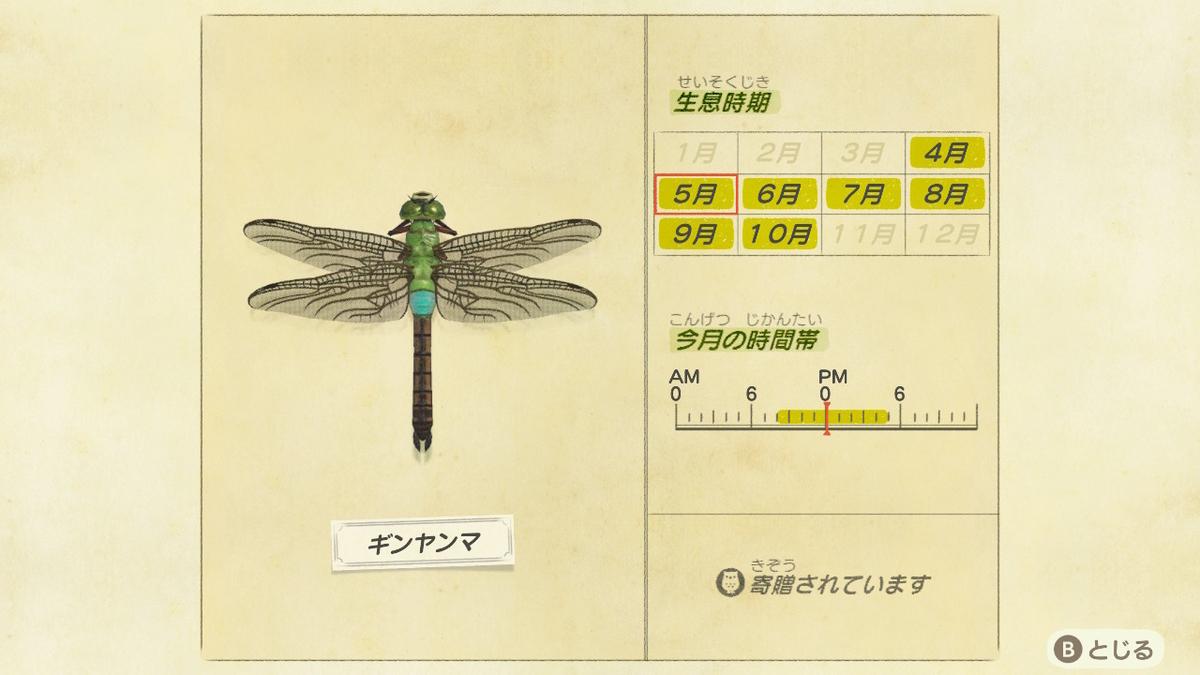 f:id:lifelog888:20200517225418j:plain