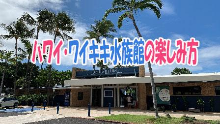 「ハワイ・ワイキキ水族館の楽しみ方」イメージ