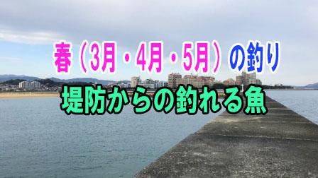 「春(3月・4月・5月)の釣り 堤防からの釣れる魚」イメージ