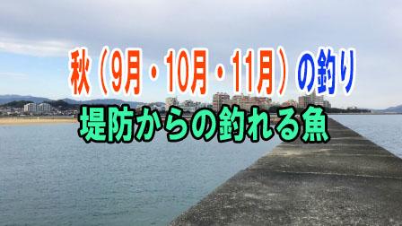 「秋(9月・10月・11月)の釣り 堤防からの釣れる魚」イメージ