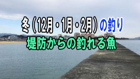 「冬(12月・1月・2月)の釣り 堤防からの釣れる魚」イメージ
