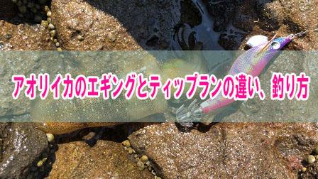 「アオリイカのエギングとティップランの違い、釣り方」イメージ