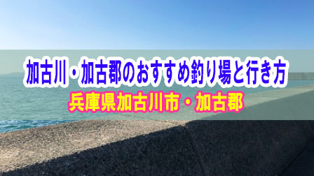 「兵庫県の加古川・加古郡のおすすめ釣り場と行き方【釣果期待度と足場安心度】」イメージ