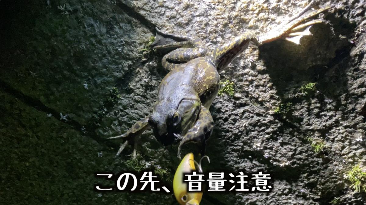 f:id:like_fish:20200601224435p:plain