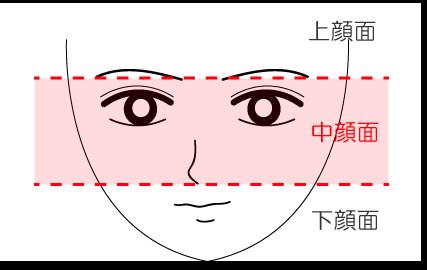 中顔面の説明の画像