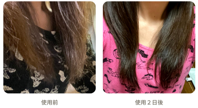 木村石鹸のシャンプー12十二の使用前後写真
