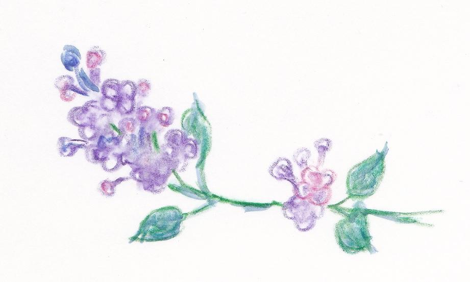 f:id:lilac-dori:20160923105845j:plain