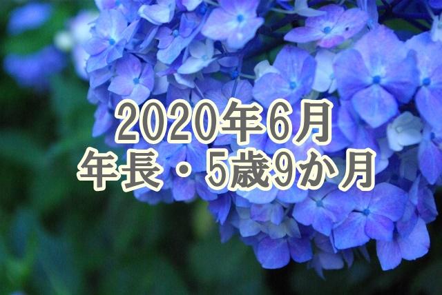 f:id:lily03:20200630042653j:plain