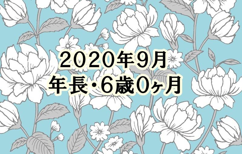 f:id:lily03:20201006152015j:plain